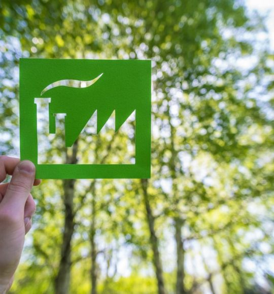 Hand holding a green factory against forest - environmental concept.
