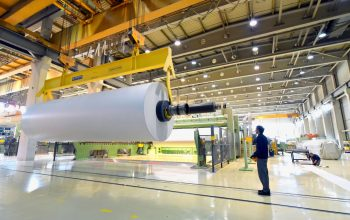 paper mill: production of paper rolls for the printing industry - paper rolls in a factory